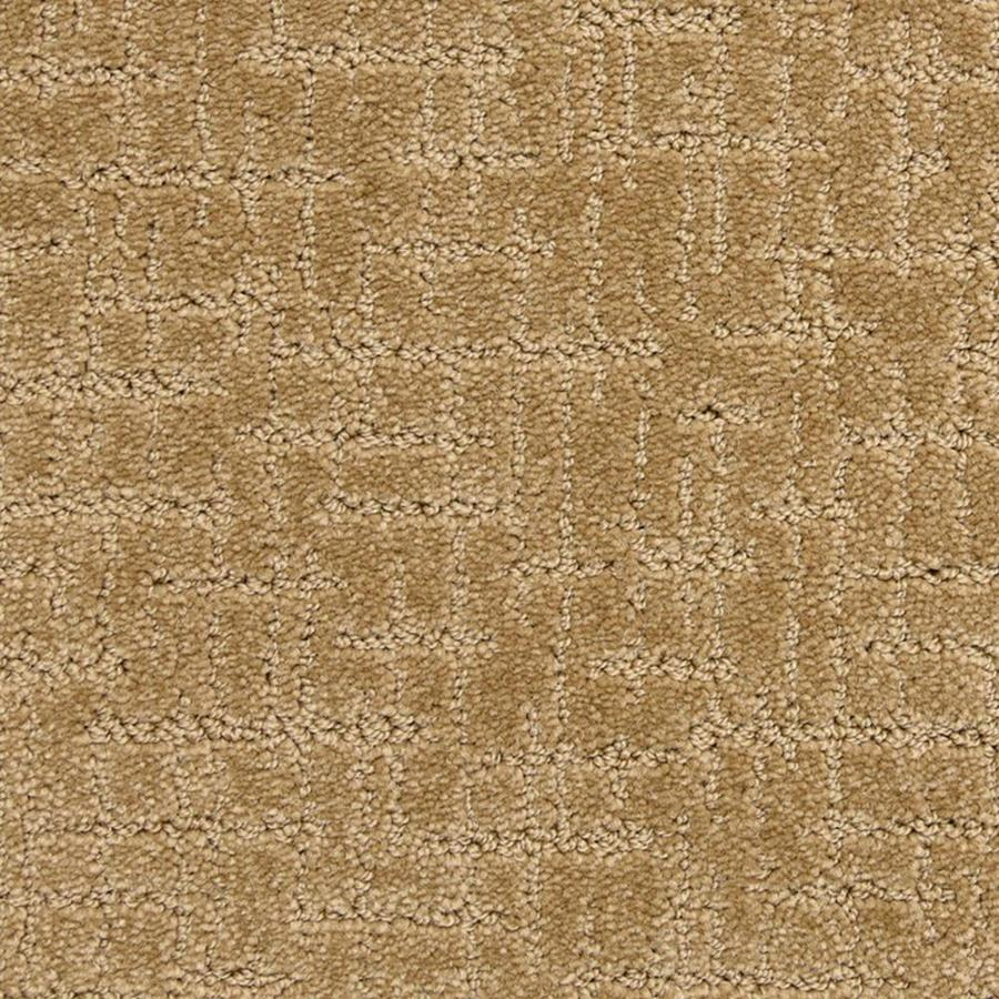 STAINMASTER PetProtect Charmed 12-ft W x Cut-to-Length Brilliant Pattern Interior Carpet