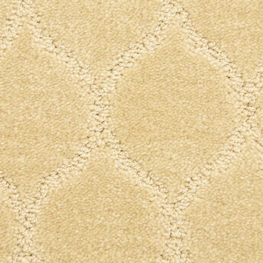 STAINMASTER PetProtect Iconic Abstract Pattern Interior Carpet