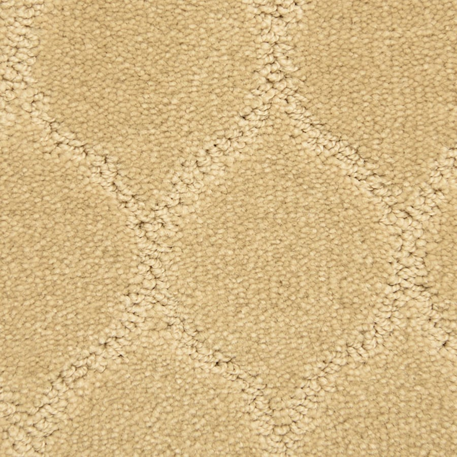 STAINMASTER PetProtect Iconic 12-ft W x Cut-to-Length Thoughtful Pattern Interior Carpet