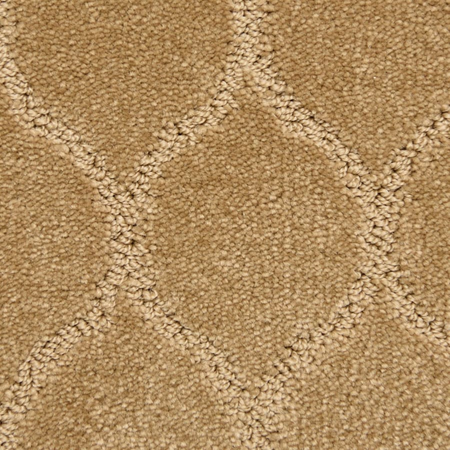 STAINMASTER PetProtect Iconic 12-ft W x Cut-to-Length Brilliant Pattern Interior Carpet