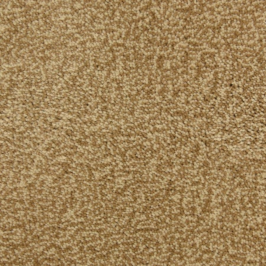 STAINMASTER PetProtect Magnetic 12-ft W Bombay Shag/Frieze Interior Carpet