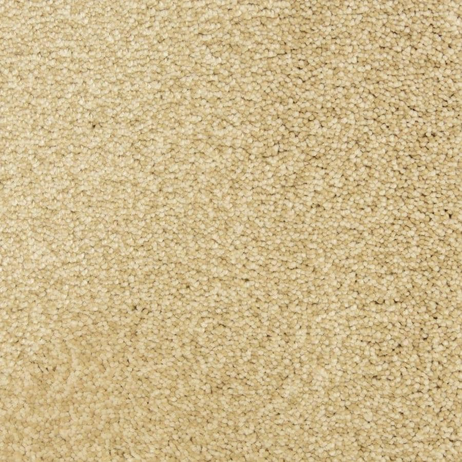 STAINMASTER Petprotect Magnetic Cotton Shag/Frieze Interior Carpet