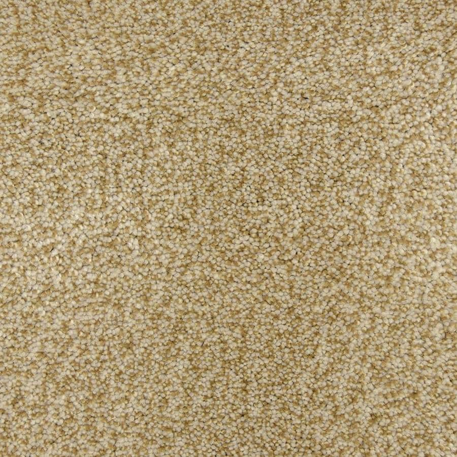 STAINMASTER PetProtect Magnetic 12-ft W x Cut-to-Length Fossil Shag/Frieze Interior Carpet
