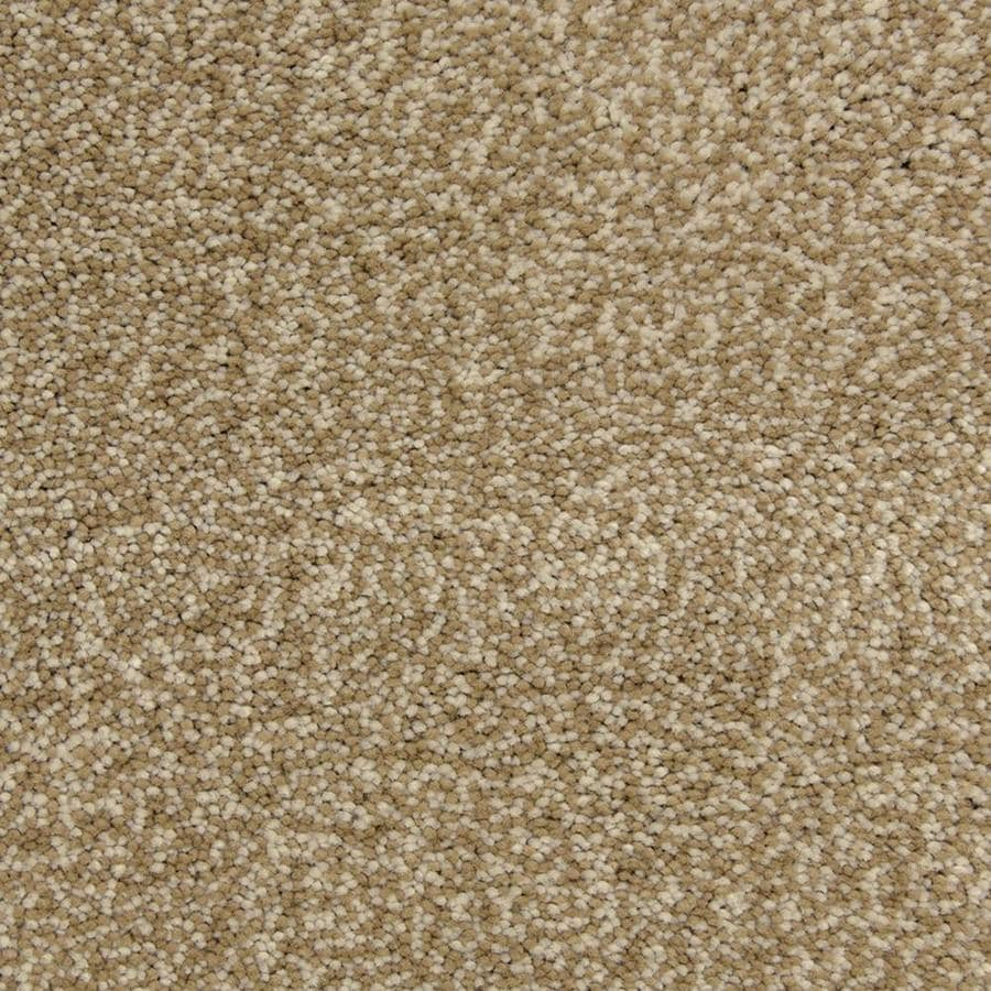 STAINMASTER PetProtect Magnetic Storm Shag/Frieze Interior Carpet