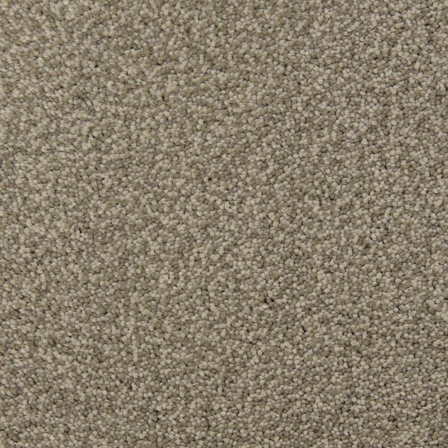 STAINMASTER Petprotect Magnetic Limestone Shag/Frieze Interior Carpet