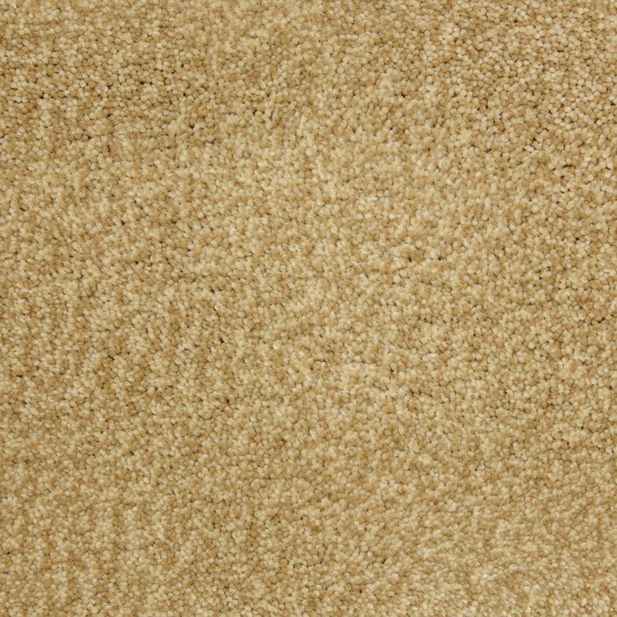 STAINMASTER PetProtect Entranced Heirloom Shag/Frieze Interior Carpet