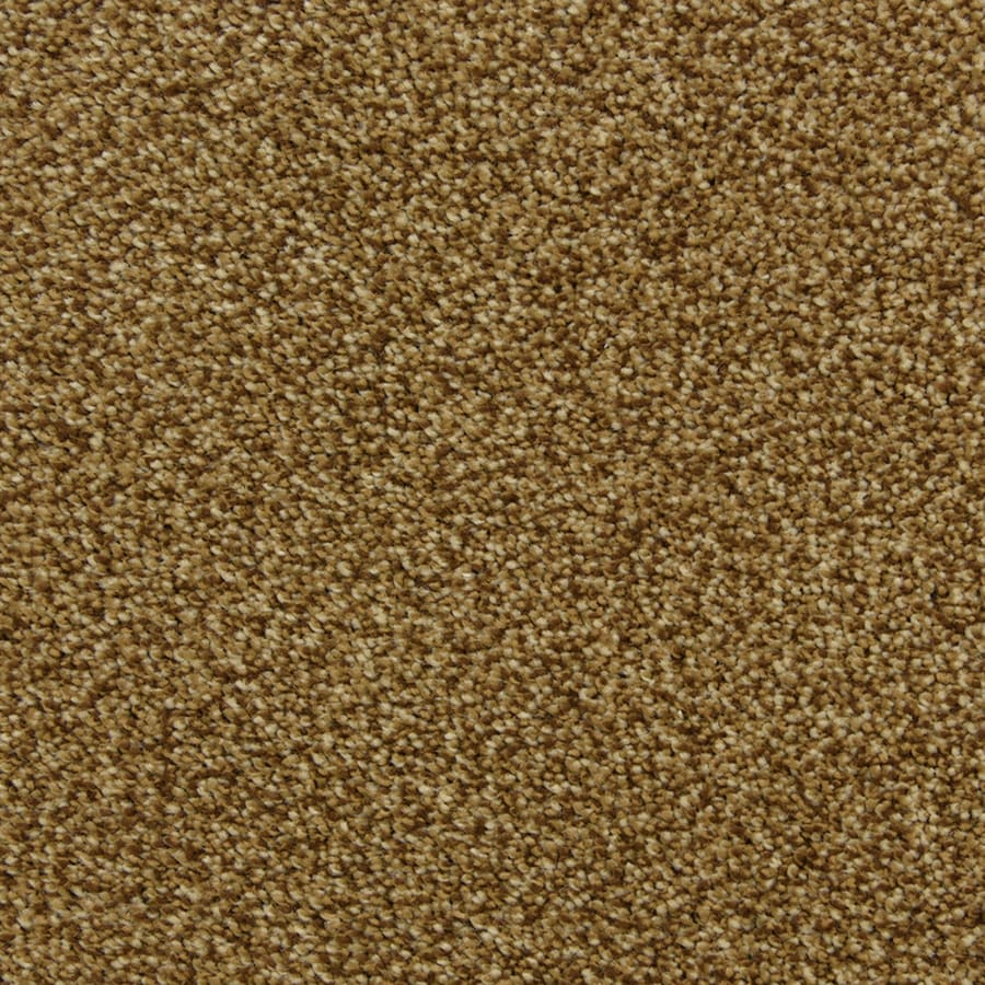 STAINMASTER PetProtect Entranced 12-ft W x Cut-to-Length Brownstone Shag/Frieze Interior Carpet