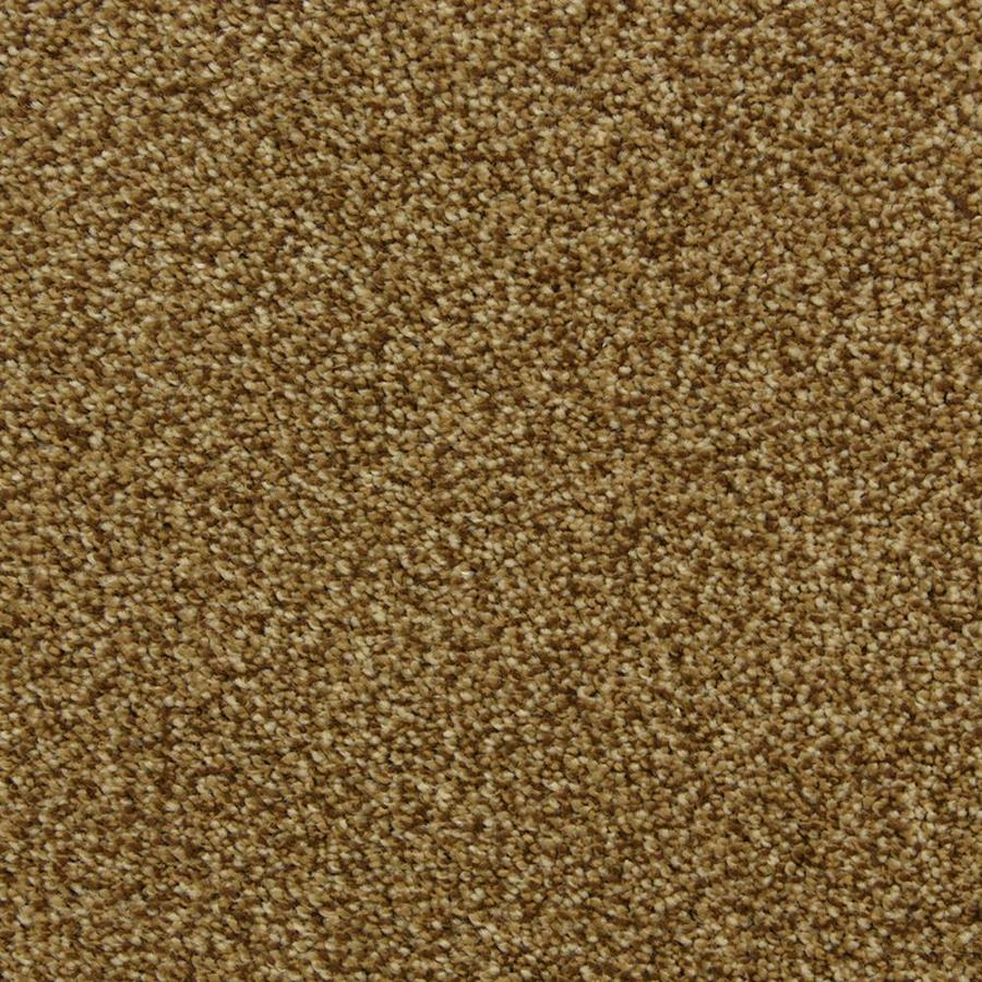 STAINMASTER PetProtect Hypnotized Brownstone Frieze Indoor Carpet