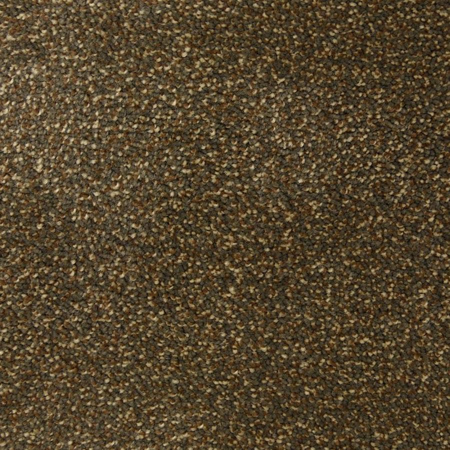 STAINMASTER PetProtect Hypnotized Sable Shag/Frieze Interior Carpet
