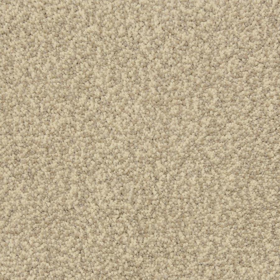 STAINMASTER PetProtect Hypnotized Cobblestone Shag/Frieze Interior Carpet