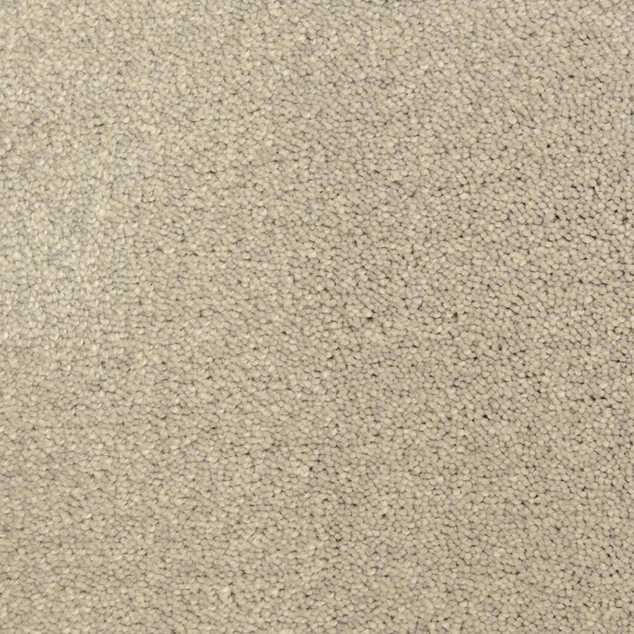 STAINMASTER PetProtect Hypnotized 12-ft W x Cut-to-Length Pagoda Shag/Frieze Interior Carpet