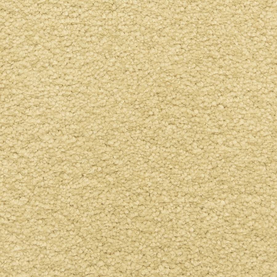 STAINMASTER LiveWell Classified 12-ft W x Cut-to-Length Sand Dollar Textured Interior Carpet