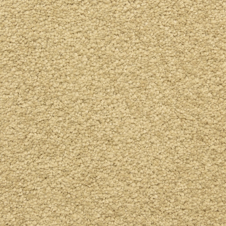 STAINMASTER LiveWell Classified 12-ft W x Cut-to-Length Kashmir Textured Interior Carpet