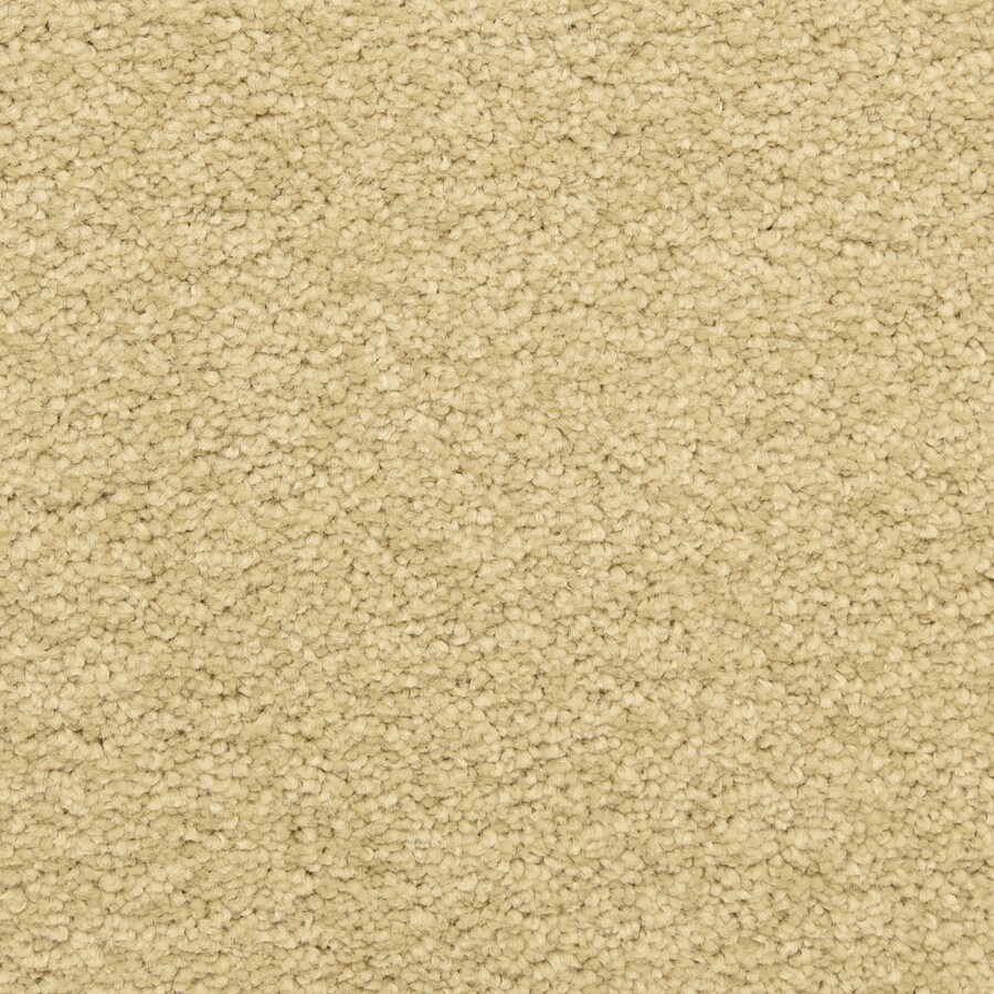 STAINMASTER LiveWell Classified 12-ft W x Cut-to-Length Bella Mia Textured Interior Carpet
