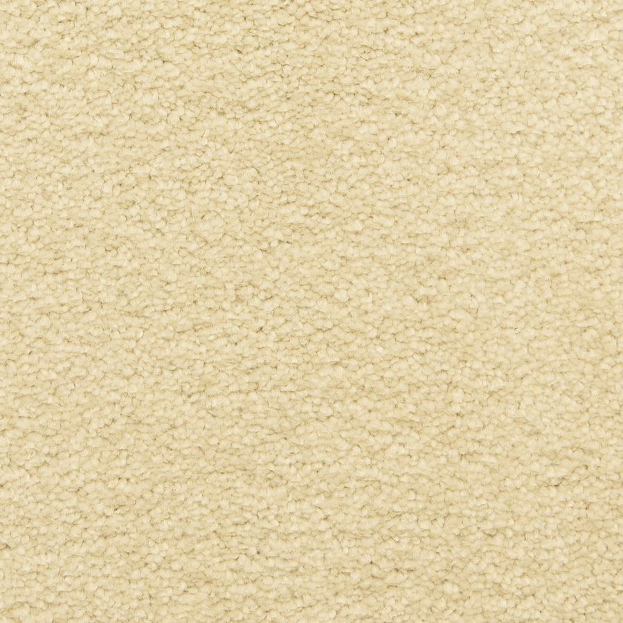 STAINMASTER LiveWell Classified 12-ft W x Cut-to-Length Ancient Scroll Textured Interior Carpet