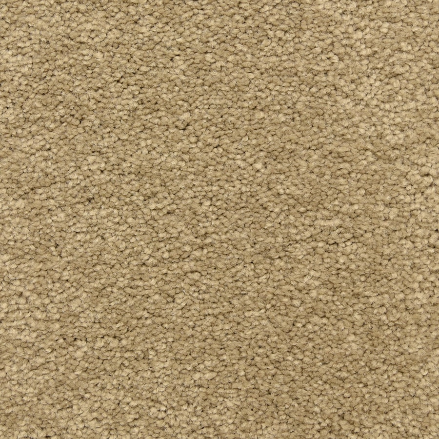 STAINMASTER LiveWell Classified 12-ft W x Cut-to-Length Upper Crust Textured Interior Carpet