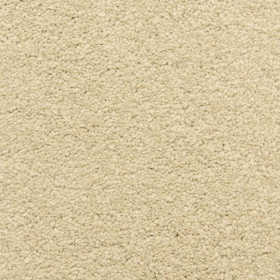 STAINMASTER LiveWell Classified Foam Textured Interior Carpet