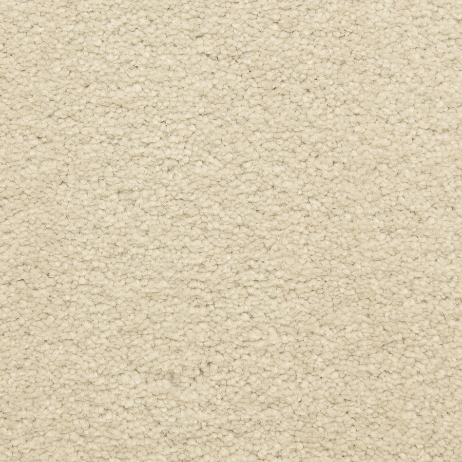STAINMASTER LiveWell Classified 12-ft W x Cut-to-Length Gentle Cloud Textured Interior Carpet