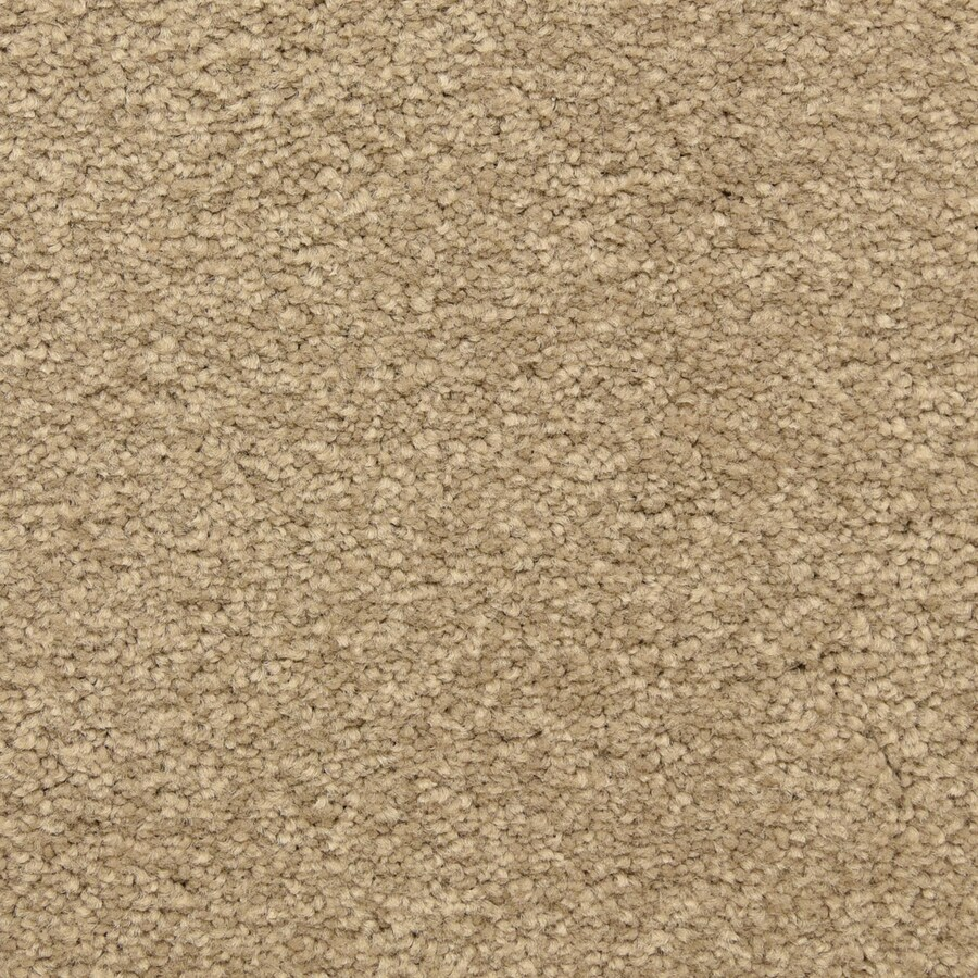 STAINMASTER LiveWell Classified 12-ft W x Cut-to-Length Lost Canyon Textured Interior Carpet