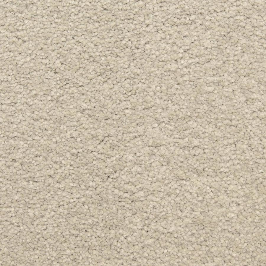 STAINMASTER LiveWell Classified 12-ft W x Cut-to-Length Rain Master Textured Interior Carpet