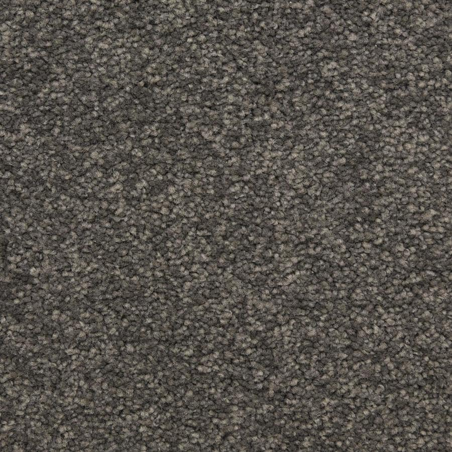 STAINMASTER LiveWell Classified 12-ft W x Cut-to-Length Sky Light Textured Interior Carpet