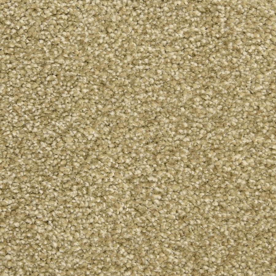 STAINMASTER LiveWell Classified Harbour Reef Textured Interior Carpet