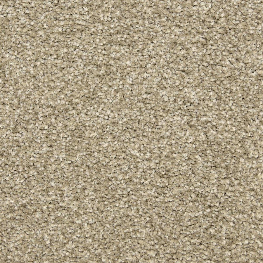 STAINMASTER LiveWell Classified 12-ft W x Cut-to-Length Costa Textured Interior Carpet