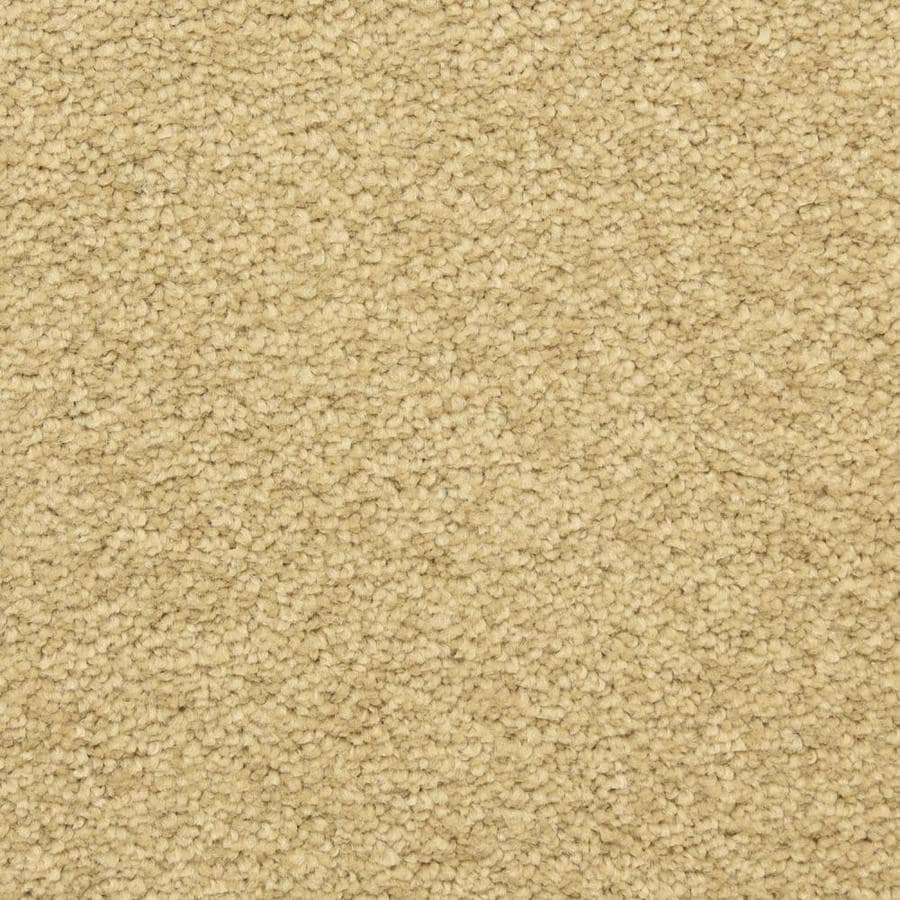 STAINMASTER LiveWell Privy Kashmir Textured Interior Carpet