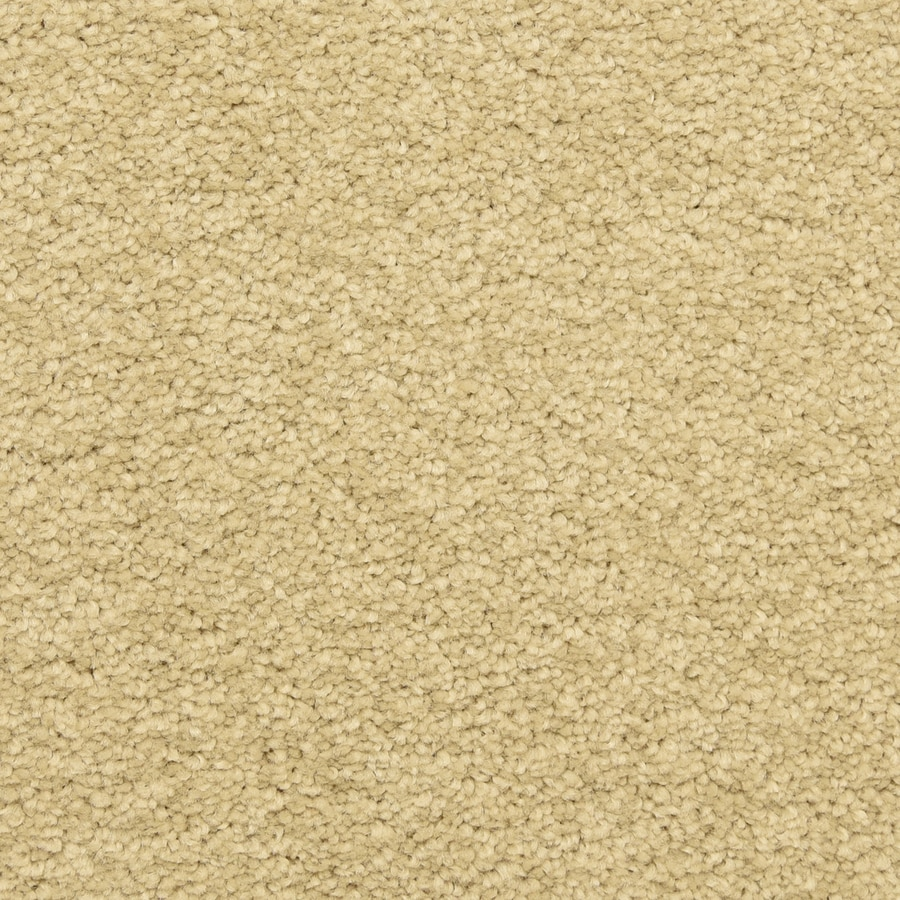 STAINMASTER LiveWell Privy Bella Mia Textured Interior Carpet