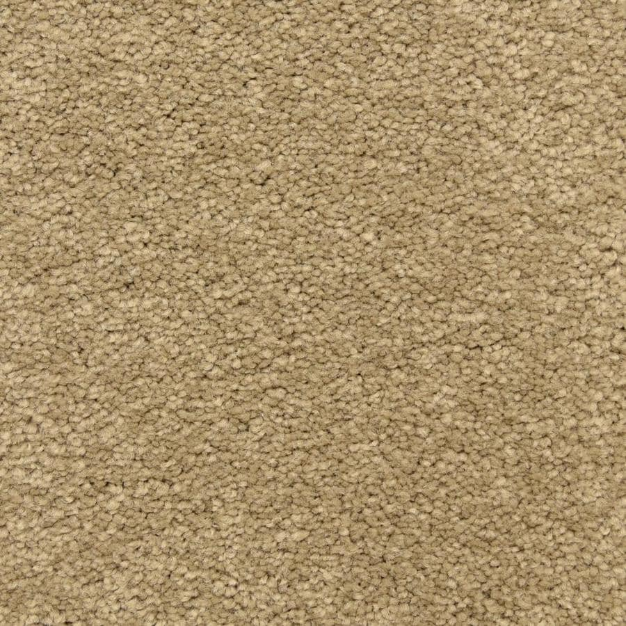 STAINMASTER LiveWell Privy 12-ft W x Cut-to-Length Upper Crust Textured Interior Carpet