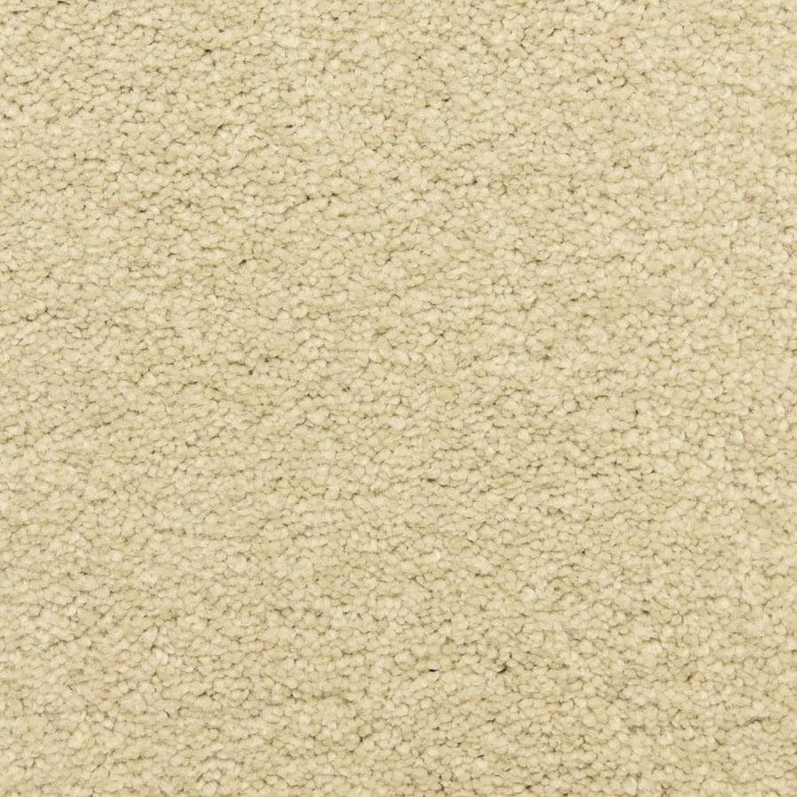STAINMASTER LiveWell Privy 12-ft W x Cut-to-Length Foam Textured Interior Carpet