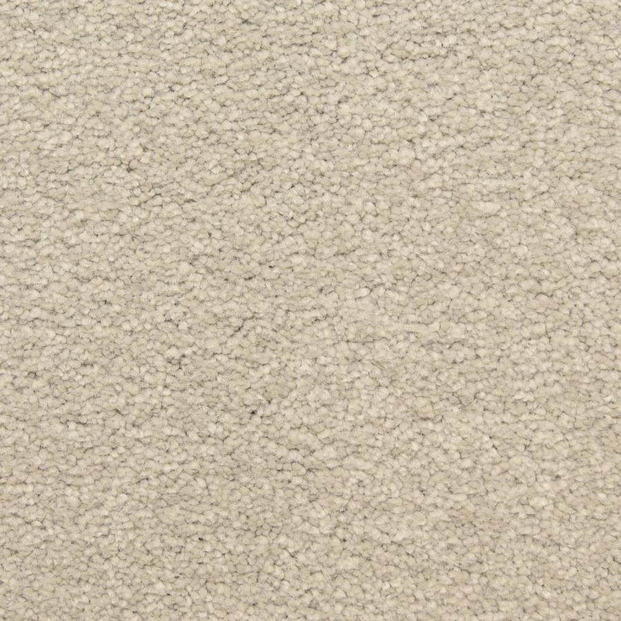 STAINMASTER LiveWell Privy Rain Master Textured Interior Carpet