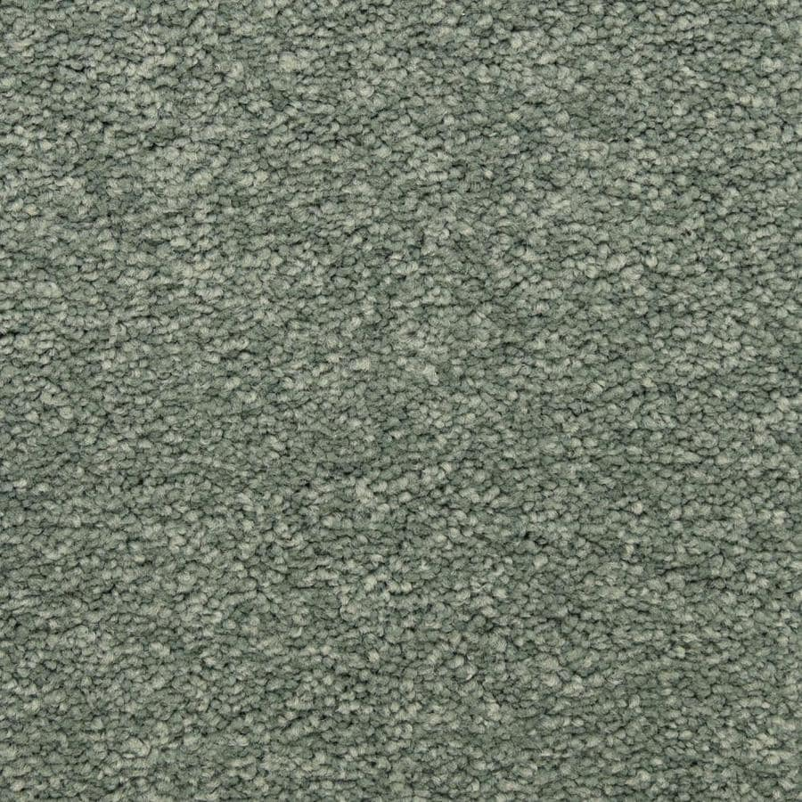 STAINMASTER LiveWell Privy 12-ft W x Cut-to-Length Deep Sea Textured Interior Carpet