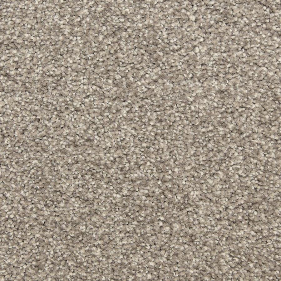 STAINMASTER LiveWell Privy Showstopper Textured Interior Carpet