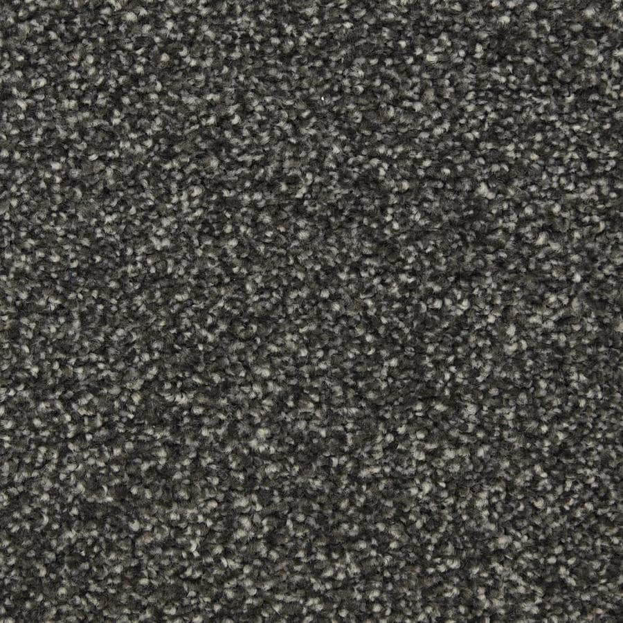 STAINMASTER LiveWell Privy 12-ft W x Cut-to-Length Award Night Textured Interior Carpet