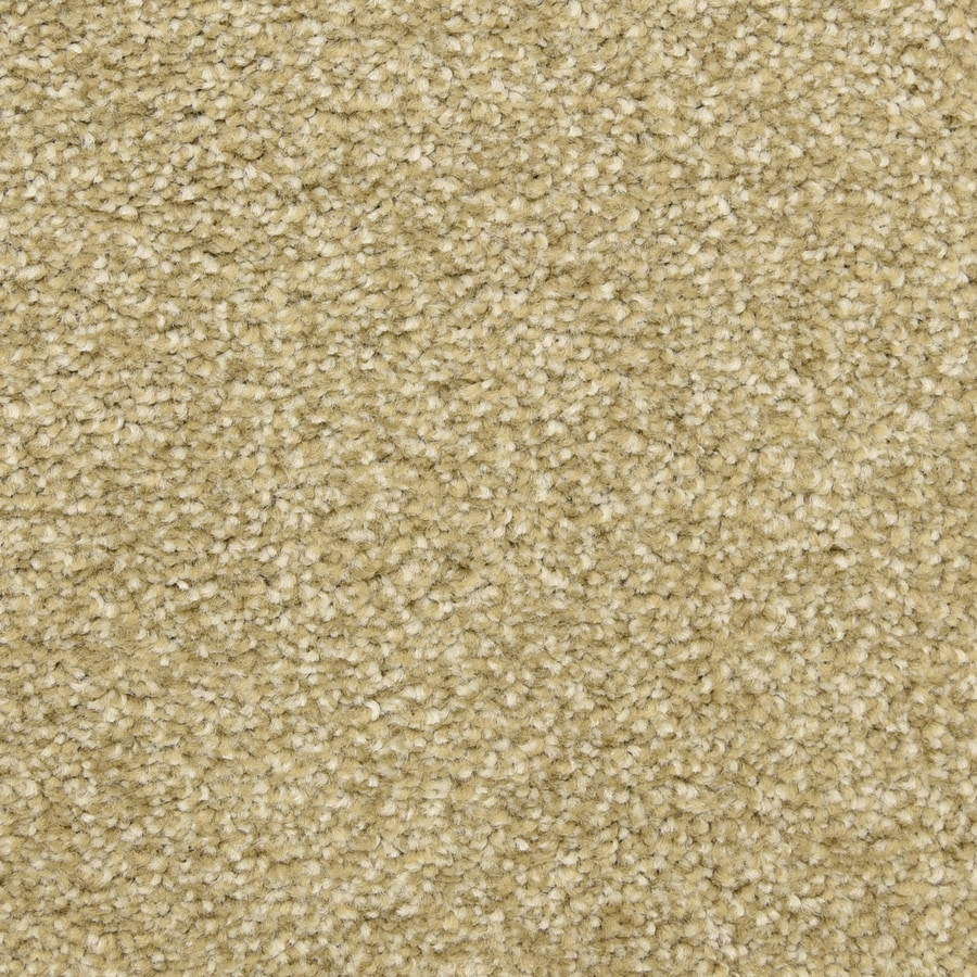 STAINMASTER LiveWell Privy 12-ft W x Cut-to-Length Cabin Fever Textured Interior Carpet