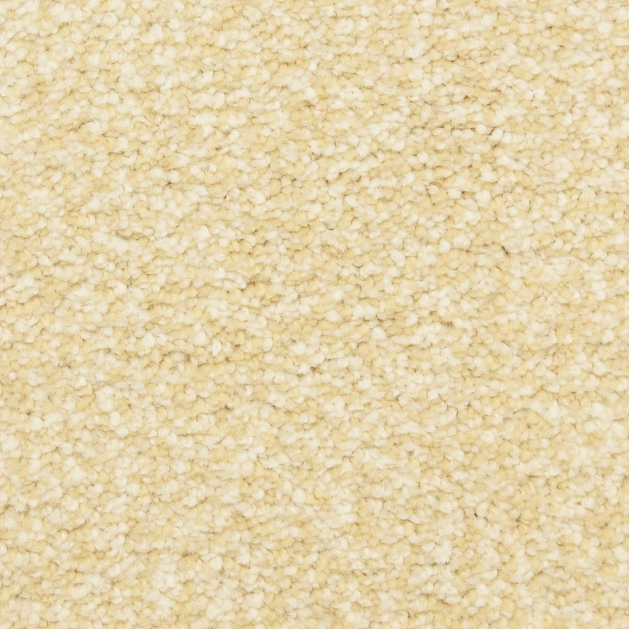 STAINMASTER LiveWell Grandstand 12-ft W x Cut-to-Length Belle Textured Interior Carpet
