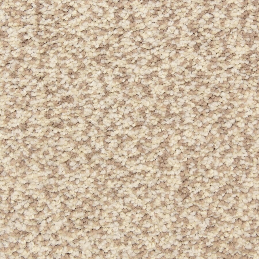 STAINMASTER LiveWell Grandstand 12-ft W x Cut-to-Length Charmin Textured Interior Carpet