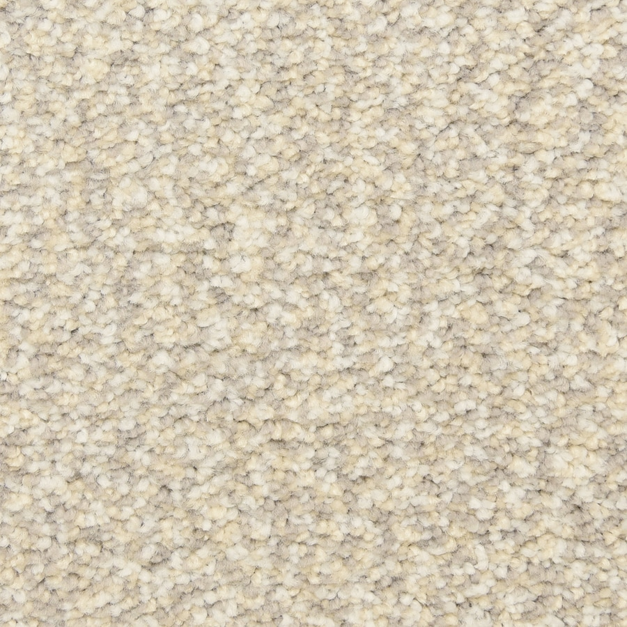 STAINMASTER LiveWell Grandstand 12-ft W x Cut-to-Length Paris Nights Textured Interior Carpet
