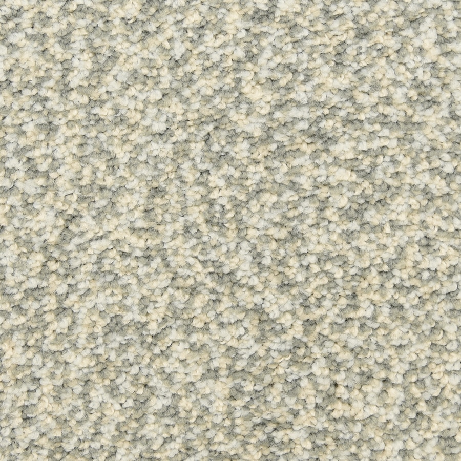 STAINMASTER LiveWell Grandstand 12-ft W x Cut-to-Length Tropic Fish Textured Interior Carpet