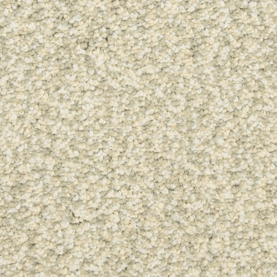 STAINMASTER LiveWell Grandstand 12-ft W x Cut-to-Length Savannah Textured Interior Carpet