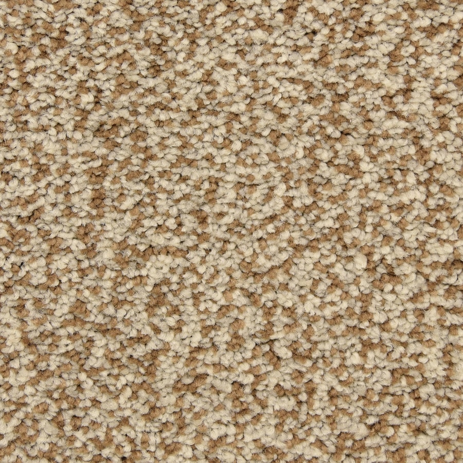 STAINMASTER LiveWell Grandstand 12-ft W x Cut-to-Length Gladden Textured Interior Carpet