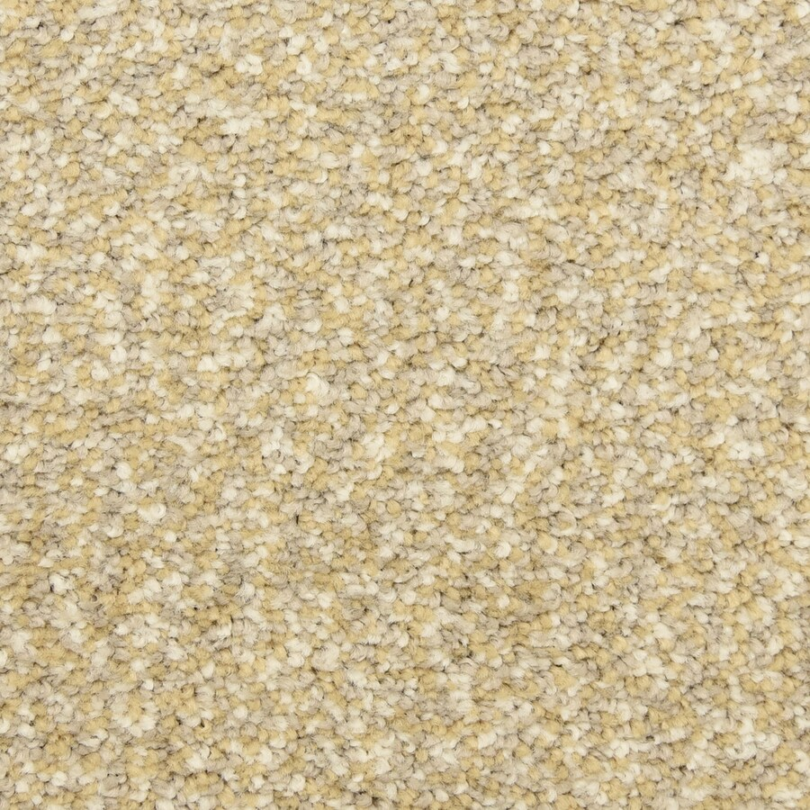 STAINMASTER LiveWell Grandstand 12-ft W x Cut-to-Length Dorchester Textured Interior Carpet