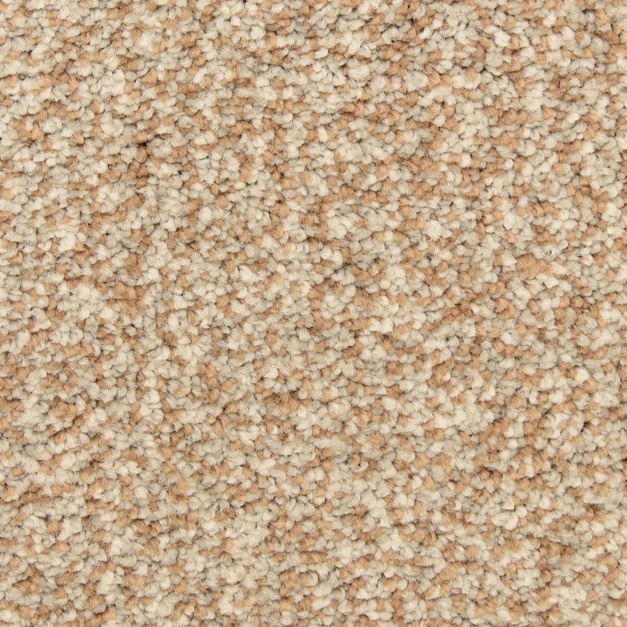 STAINMASTER LiveWell Grandstand 12-ft W x Cut-to-Length Autumn Maize Textured Interior Carpet