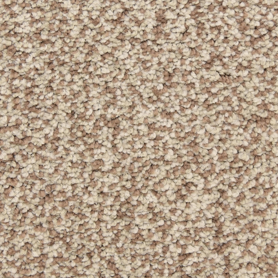 STAINMASTER LiveWell Grandstand 12-ft W x Cut-to-Length Phoenix Textured Interior Carpet