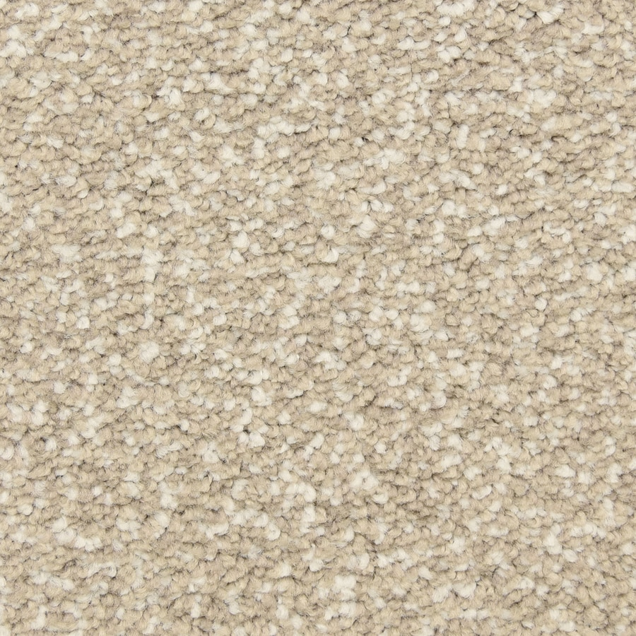 STAINMASTER LiveWell Grandstand 12-ft W x Cut-to-Length Viking Dusk Textured Interior Carpet