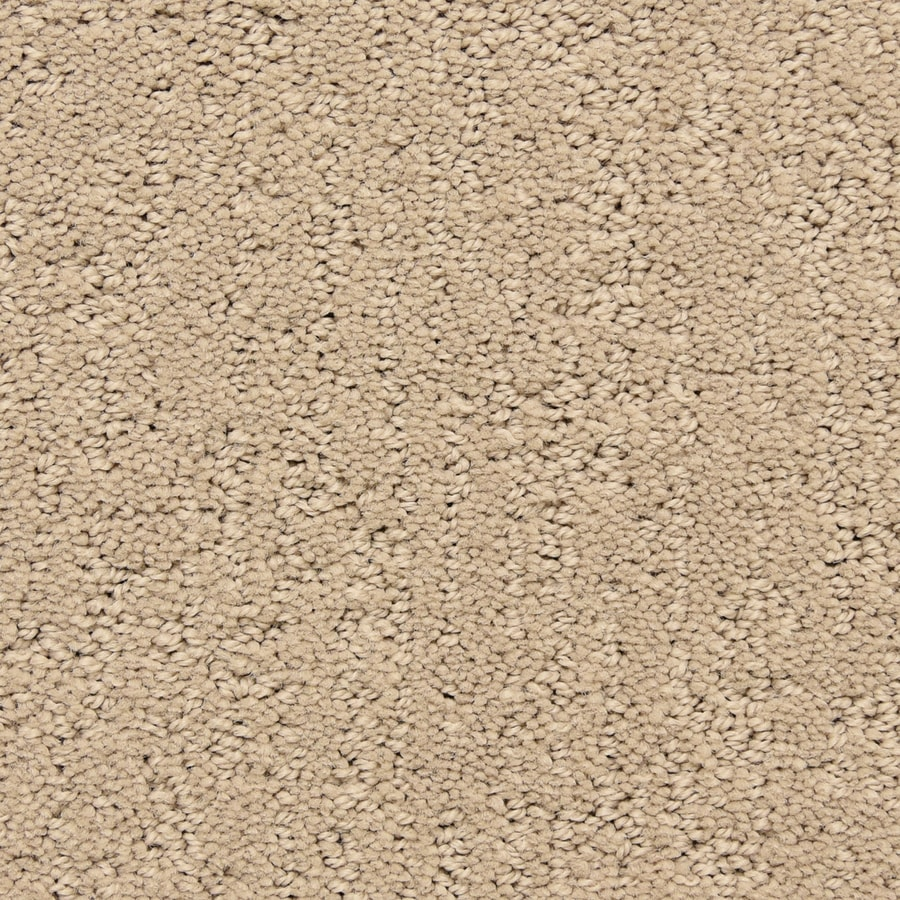 STAINMASTER LiveWell Musical 12-ft W x Cut-to-Length Antler Pattern Interior Carpet