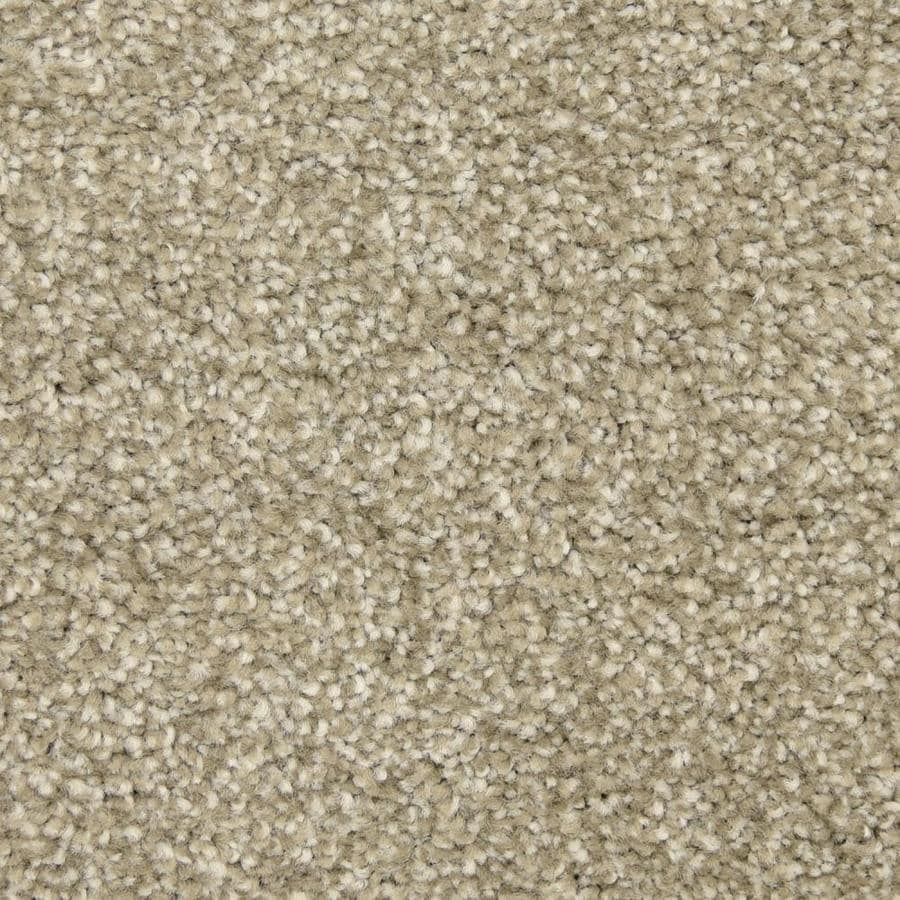 STAINMASTER LiveWell Hush-Hush 12-ft W x Cut-to-Length Prince Textured Interior Carpet