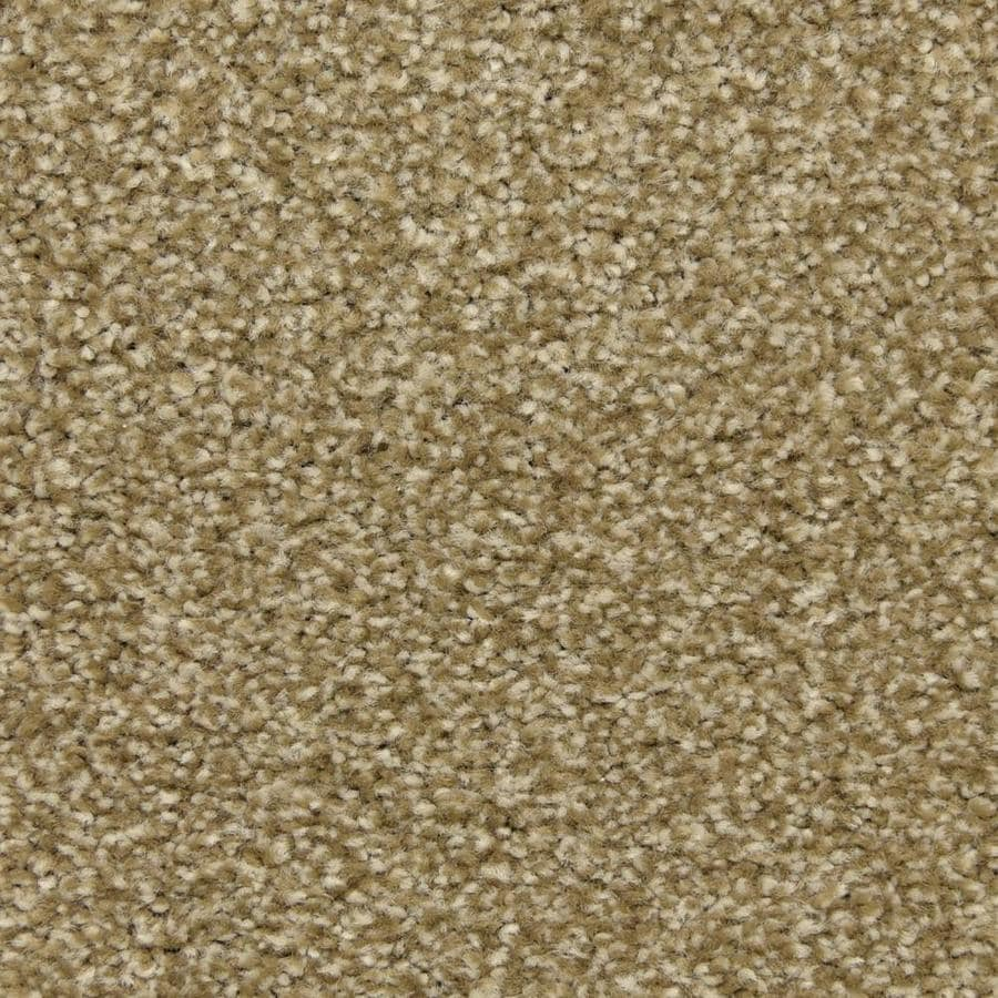 STAINMASTER LiveWell Fairy-Tale Magic Potion Textured Interior Carpet