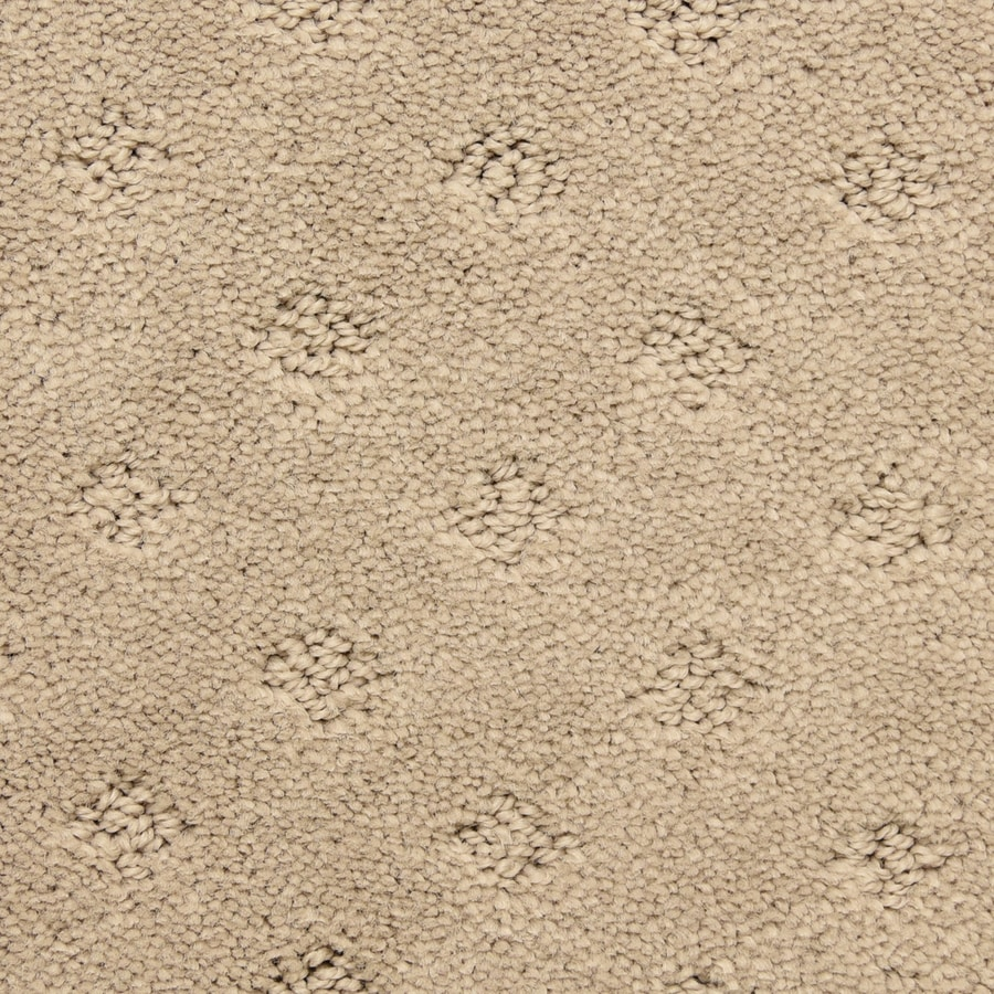 STAINMASTER LiveWell Symphonic Antler Pattern Interior Carpet